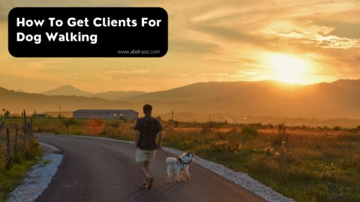 How To Get Clients For Dog Walking